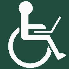 Accessible-Logo